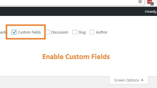 enable-custom-fields
