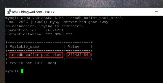 Get the InnoDB Buffer Pool Size