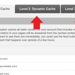 Server Caching on Shared Hosting
